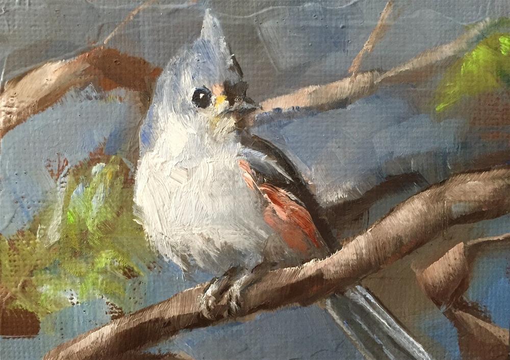 """""""Titmouse"""" original fine art by Gary Bruton"""
