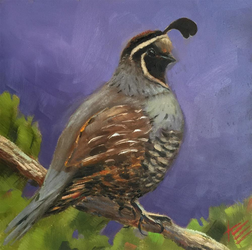 """Gamble's Quail"" original fine art by Krista Eaton"