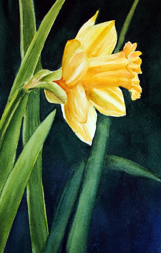 """""""It Must be Spring"""" original fine art by Mary Anderson"""