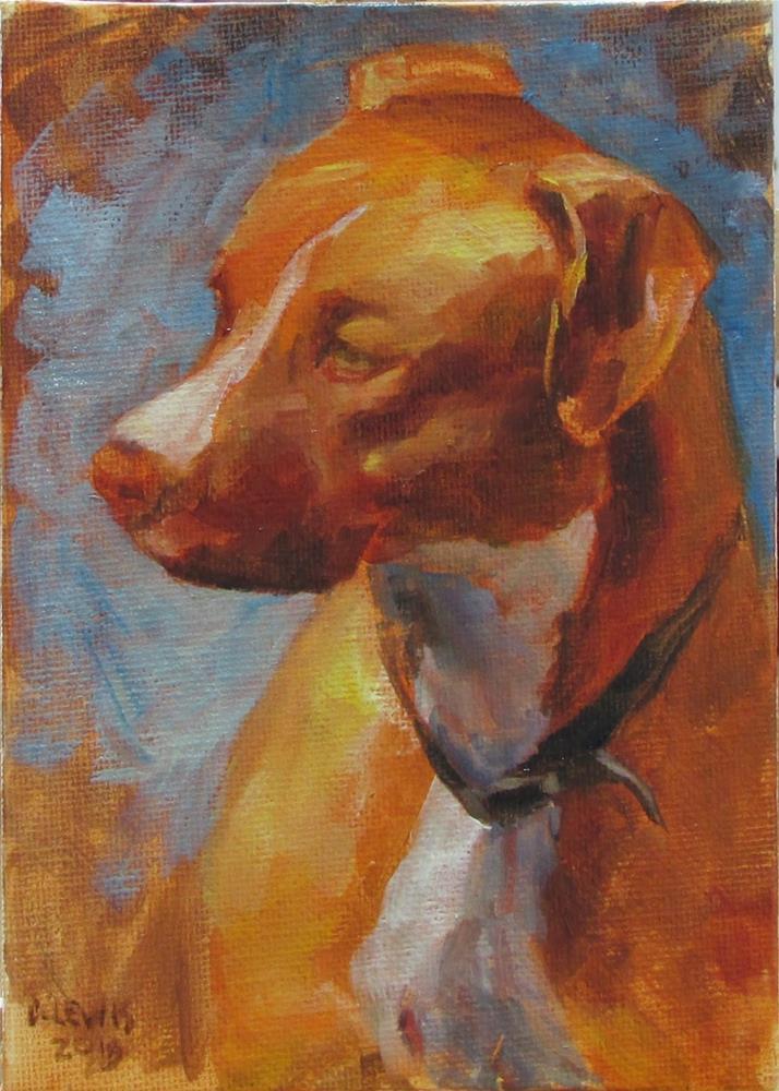"""Handsome Fella"" original fine art by Christine Lewis"