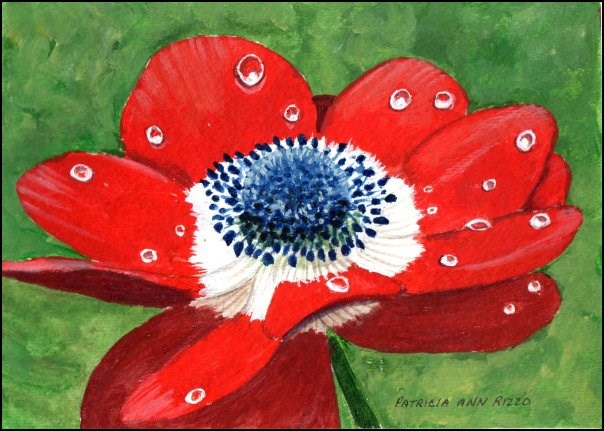 """Red Anemone"" original fine art by Patricia Ann Rizzo"