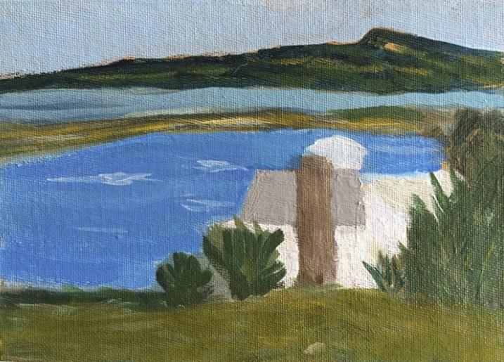 """Nashawena Island from Cuttyhunk"" original fine art by Susan Medyn"