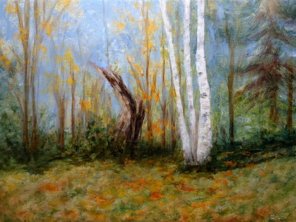 """Sugar Maple Stump And Triple Trunked Birch"" original fine art by Dalan Wells"