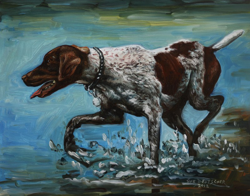 """German Shorthaired Pointer"" original fine art by Sue Deutscher"