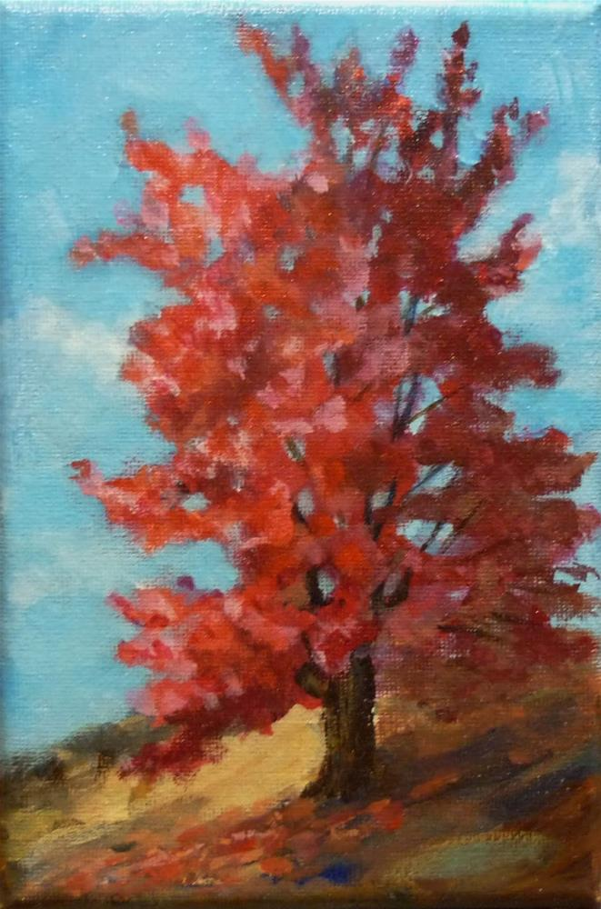 """Sugar Maple"" original fine art by Helene Adamson"