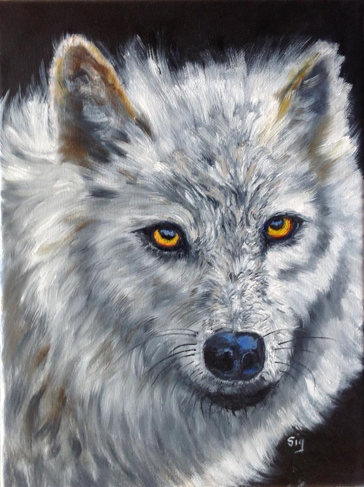 """Artic Wolf"" original fine art by Sigrid Victor"