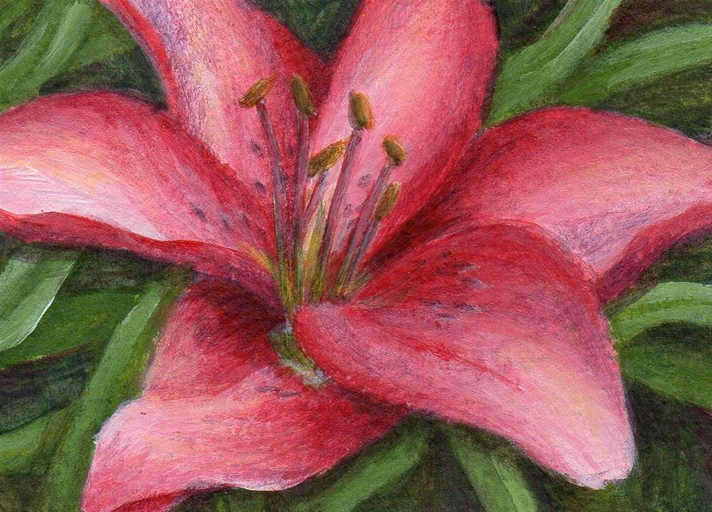 """Pink Lily"" original fine art by Debbie Shirley"