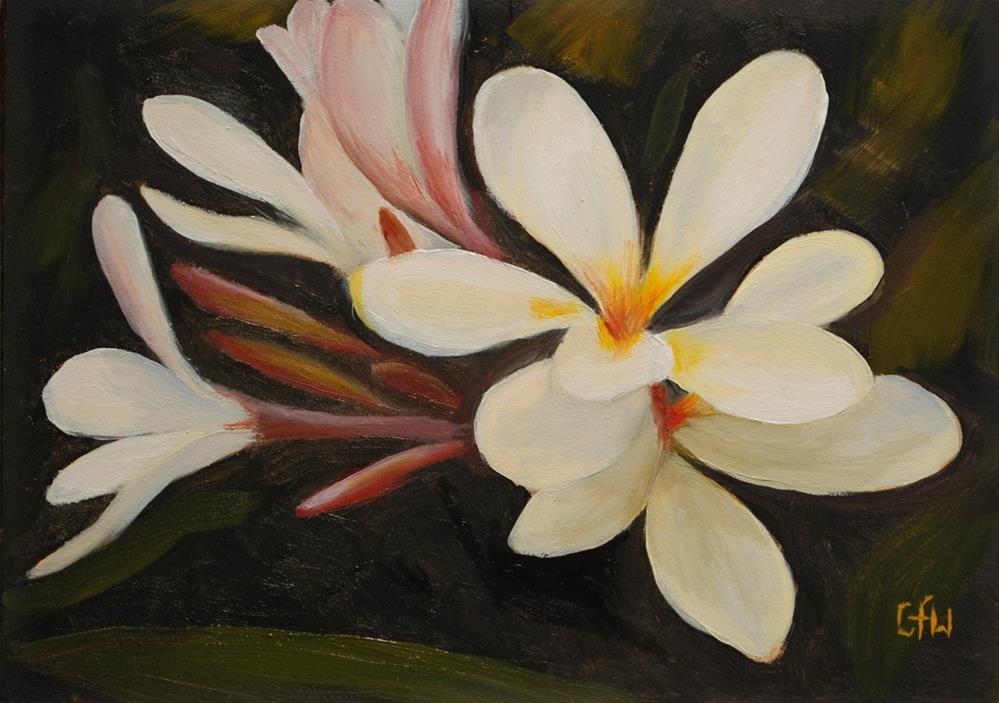 """Plumeria"" original fine art by Gary Westlake"