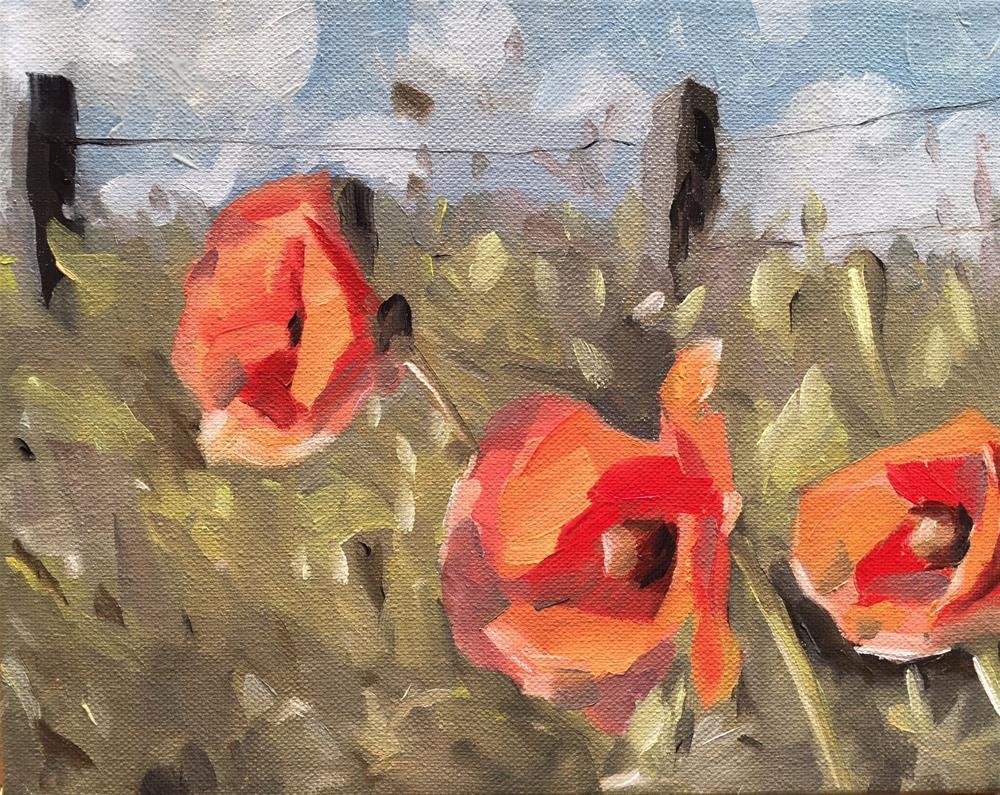 """285 Poppies"" original fine art by Jenny Doh"
