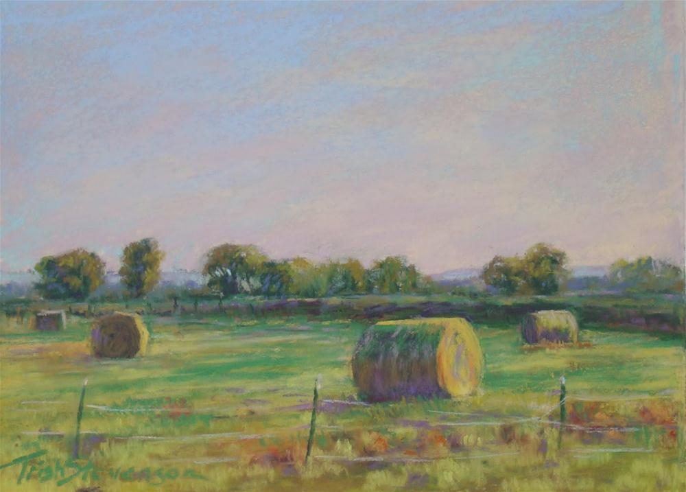 """Morning Dew on the Hay"" original fine art by Trish Stevenson"