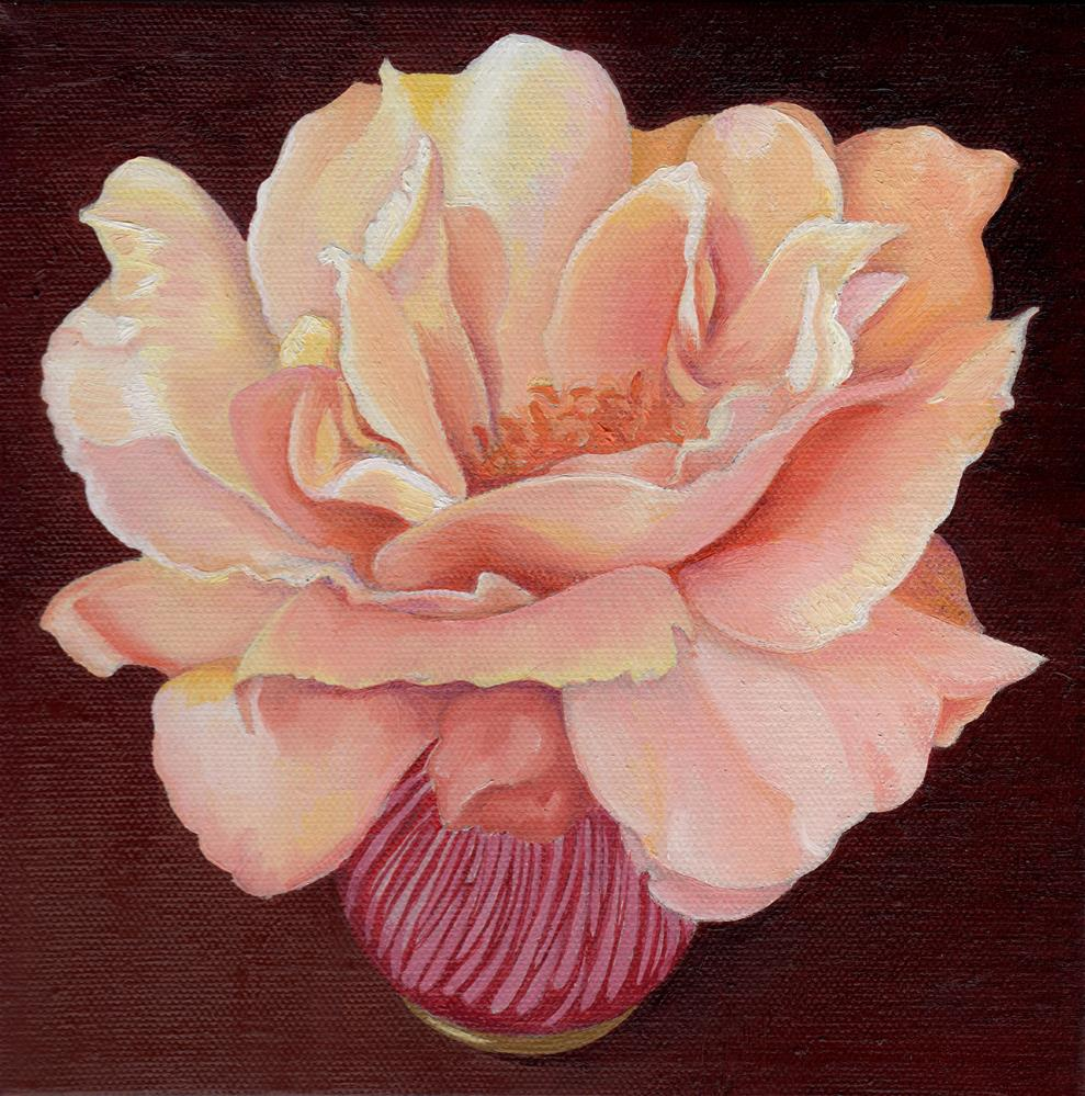 """Rose"" original fine art by Catherine Al-Rubaie"