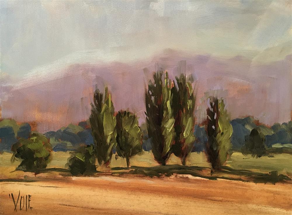 """#297 Road to Pisa"" original fine art by Patty Voje"
