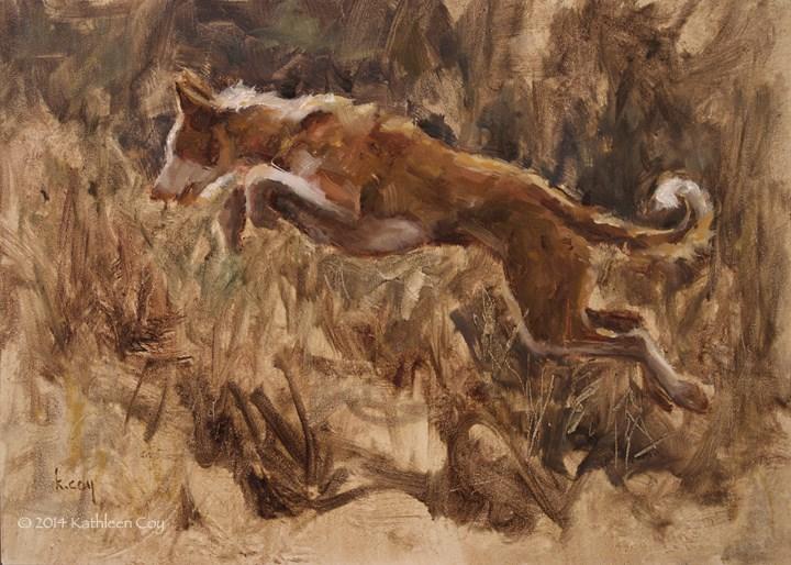 """""""Day 19 - Wire-coat Ibizan Hound"""" original fine art by Kathleen Coy"""