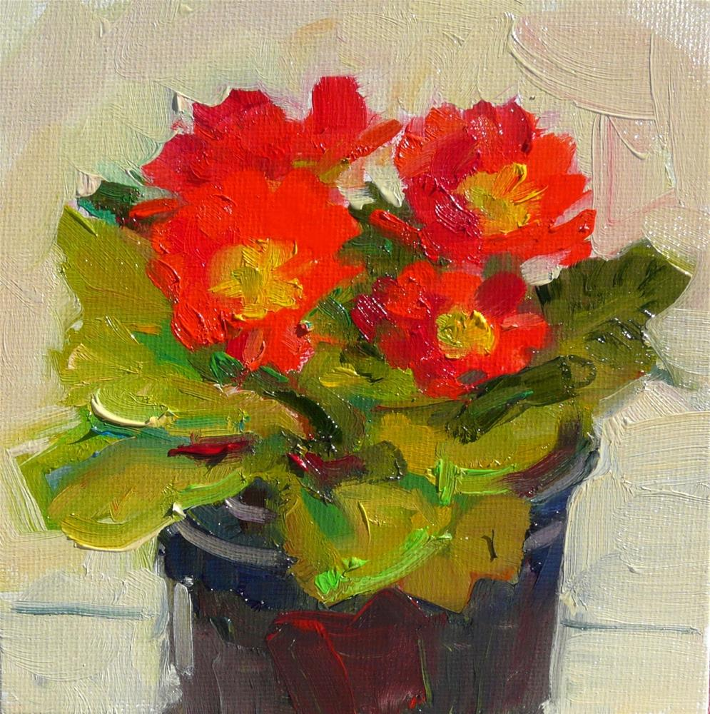 """Another Prinmrose,still life,oil on canvas,6x6,price$200"" original fine art by Joy Olney"