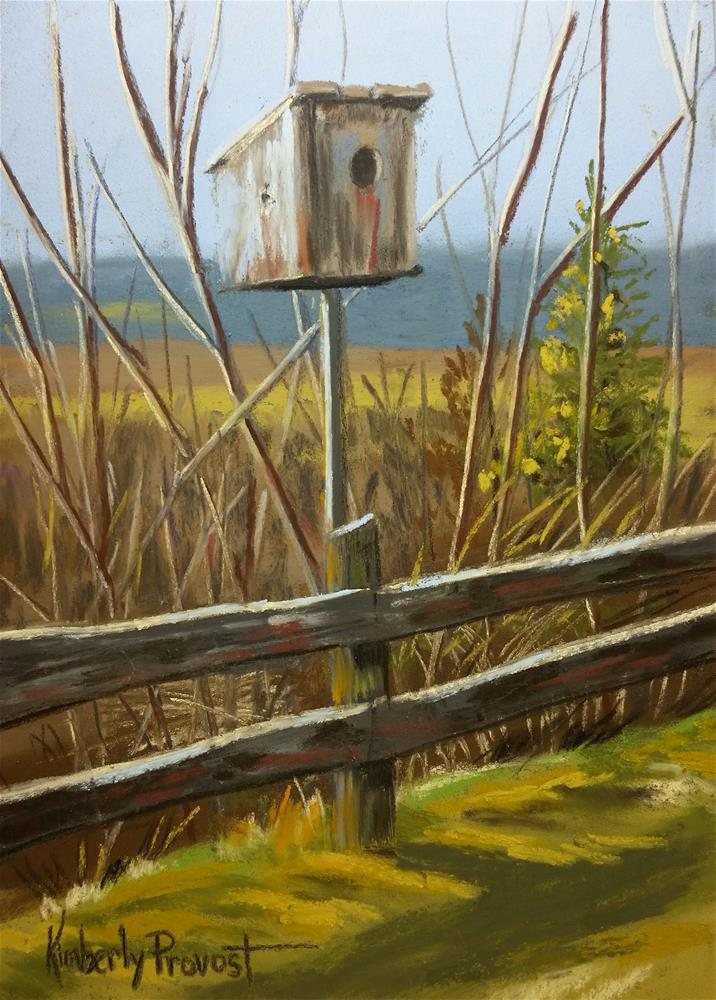 """Backyard Birdhouse"" original fine art by Kimberly Provost"