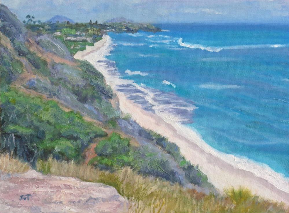 """""""Hawaii"""" original fine art by Sue van Tonningen"""