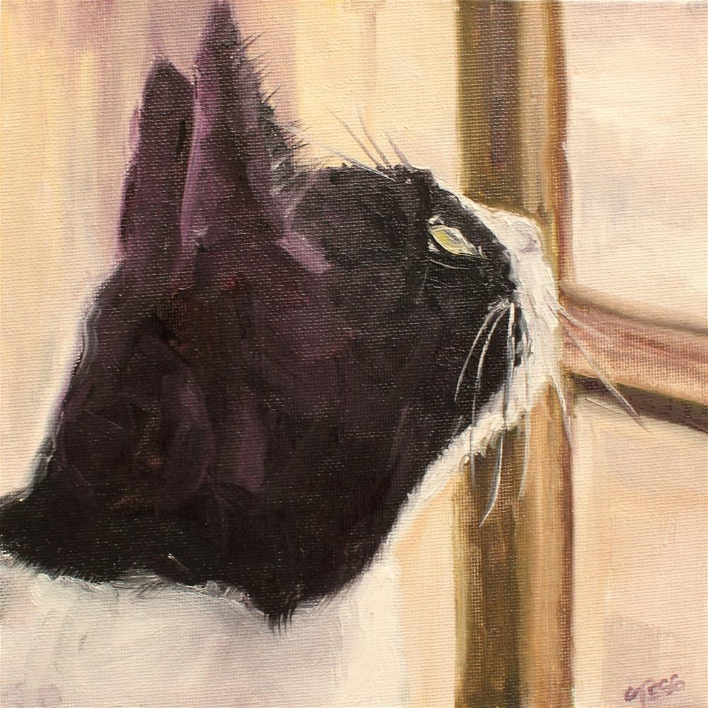 """Black and White Kitty"" original fine art by Tess Lehman"