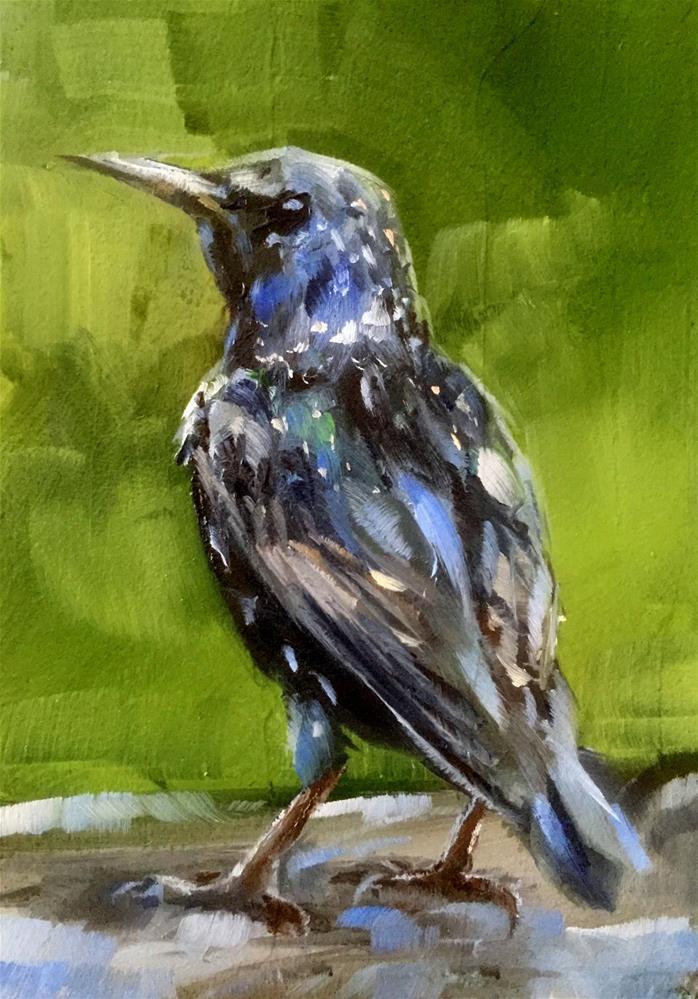 """Starling"" original fine art by Gary Bruton"