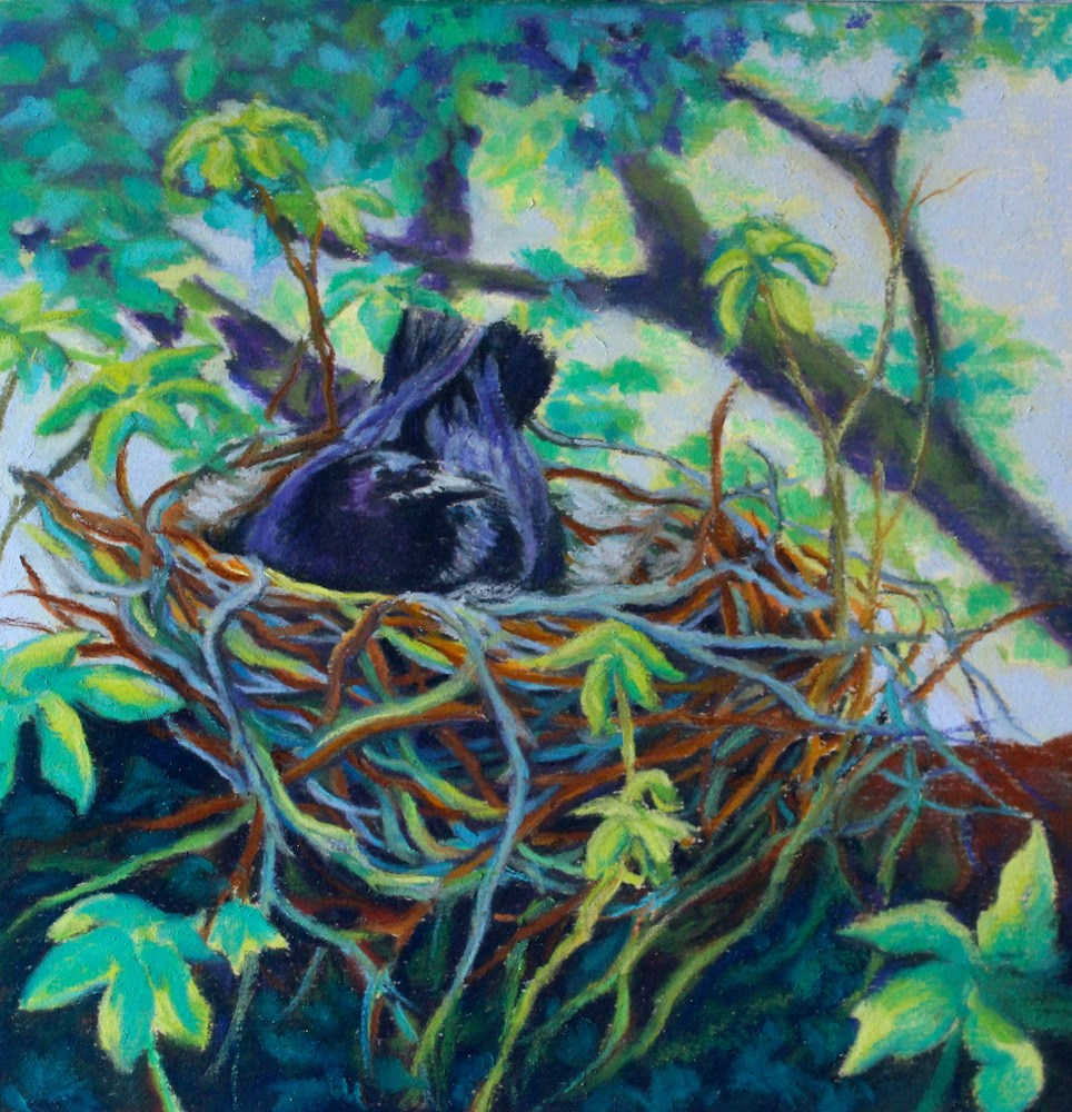 """Nesting"" original fine art by Jill Bates"