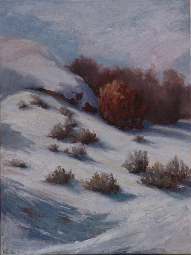 """""""Winter's Blanket"""" original fine art by Sheila Marie"""