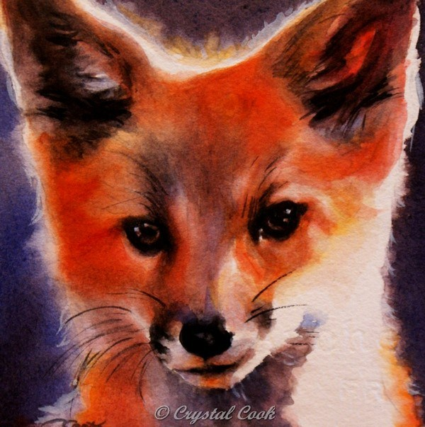 """Vulpes"" original fine art by Crystal  Cook"