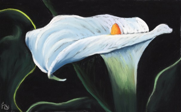 Blue Calla Lily original fine art by Ria Hills