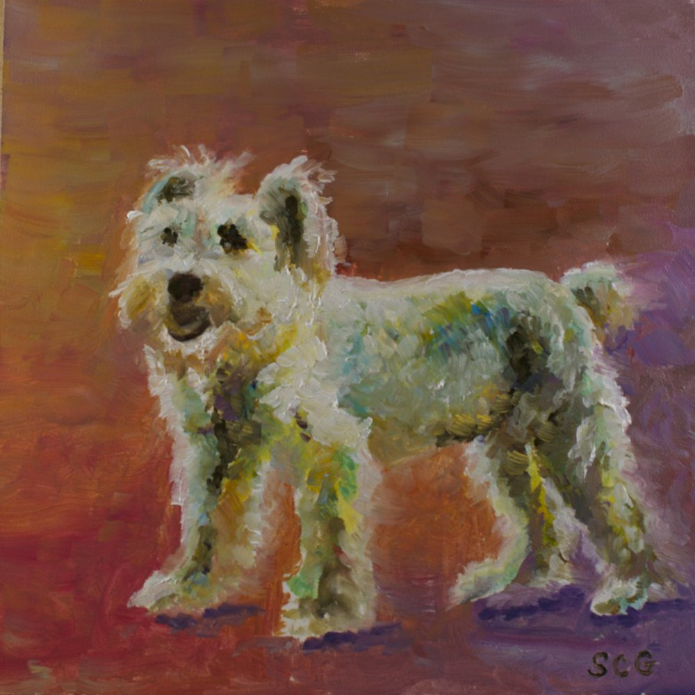"""Scottie"" original fine art by Sue Churchgrant"