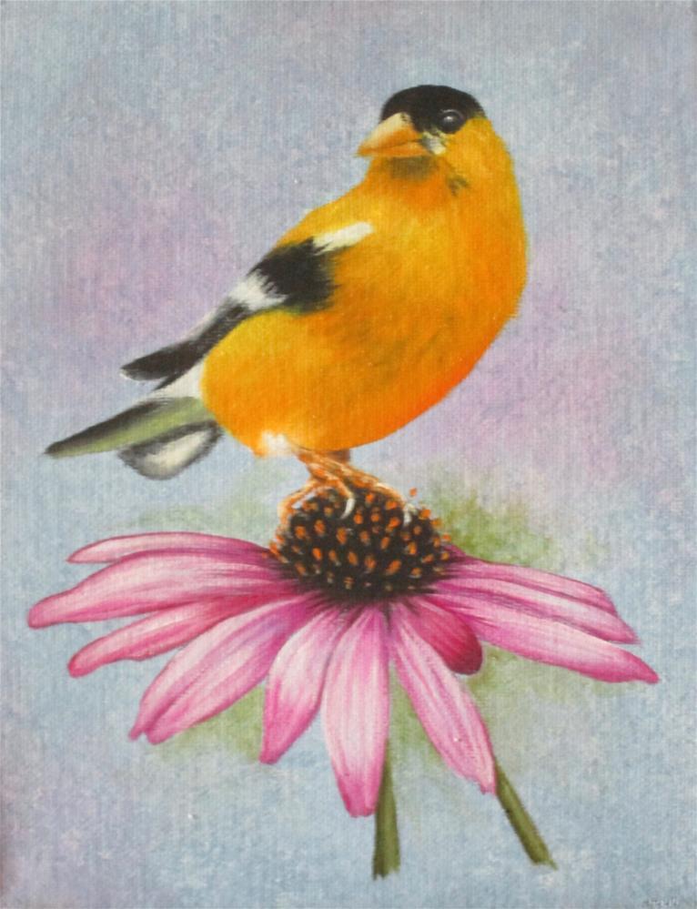 """Yellow Finch and Coneflower"" original fine art by Barbara Wagner"