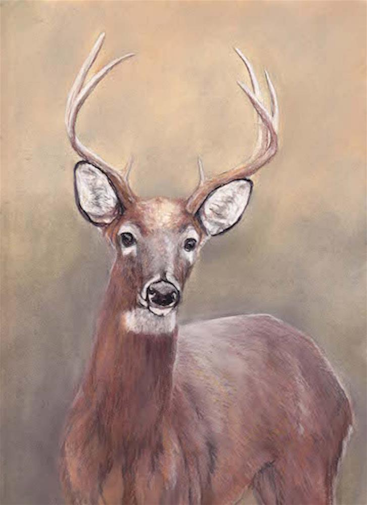 """The Buck"" original fine art by Charlotte Yealey"