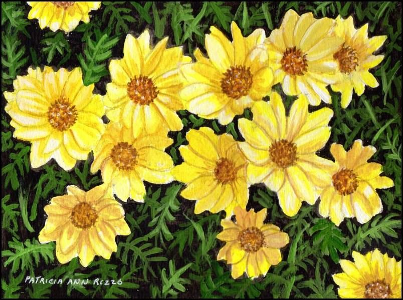 """""""Pretty Yellow Daisies"""" original fine art by Patricia Ann Rizzo"""