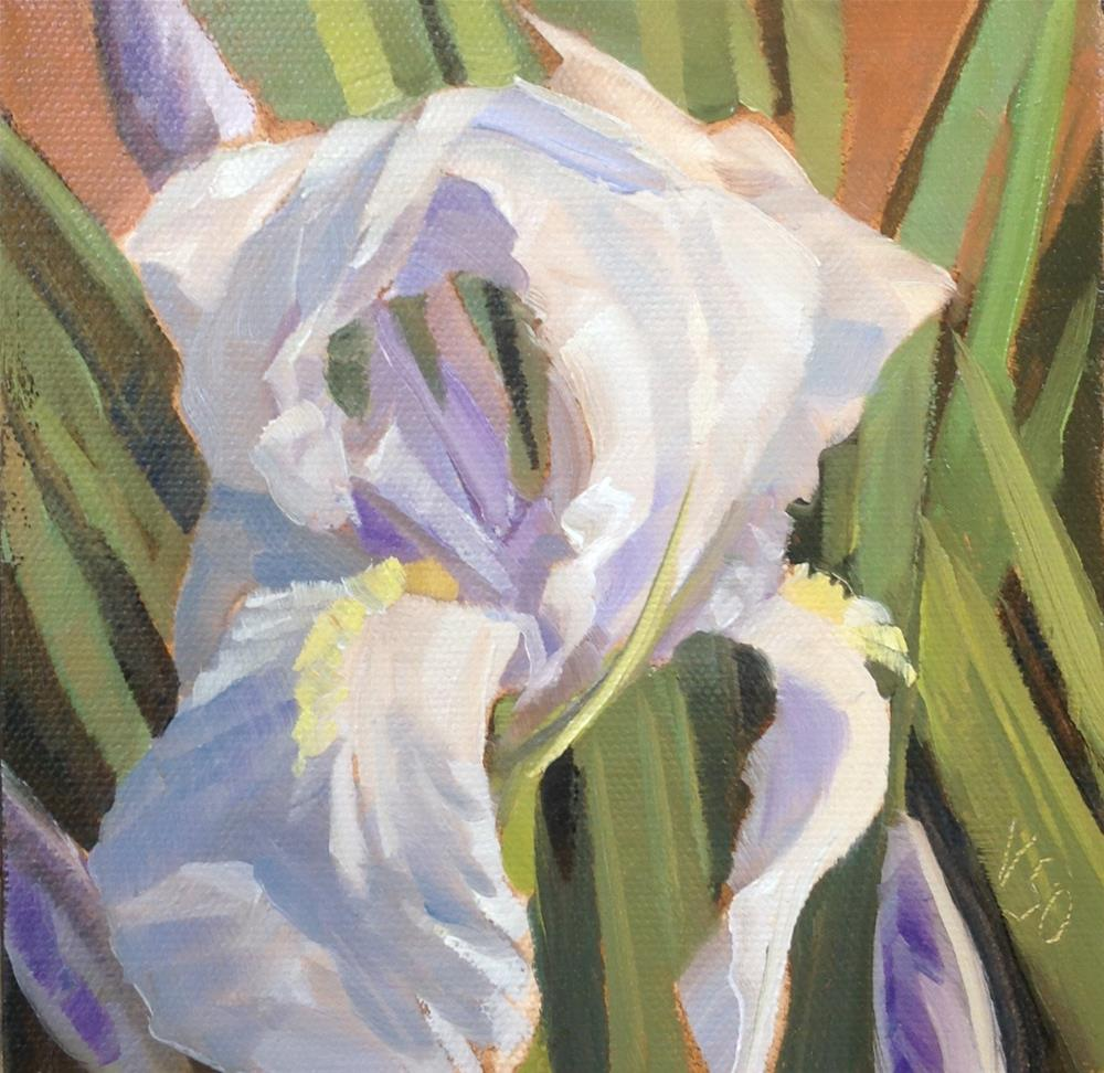 """White Iris"" original fine art by Valerie Orlemann"