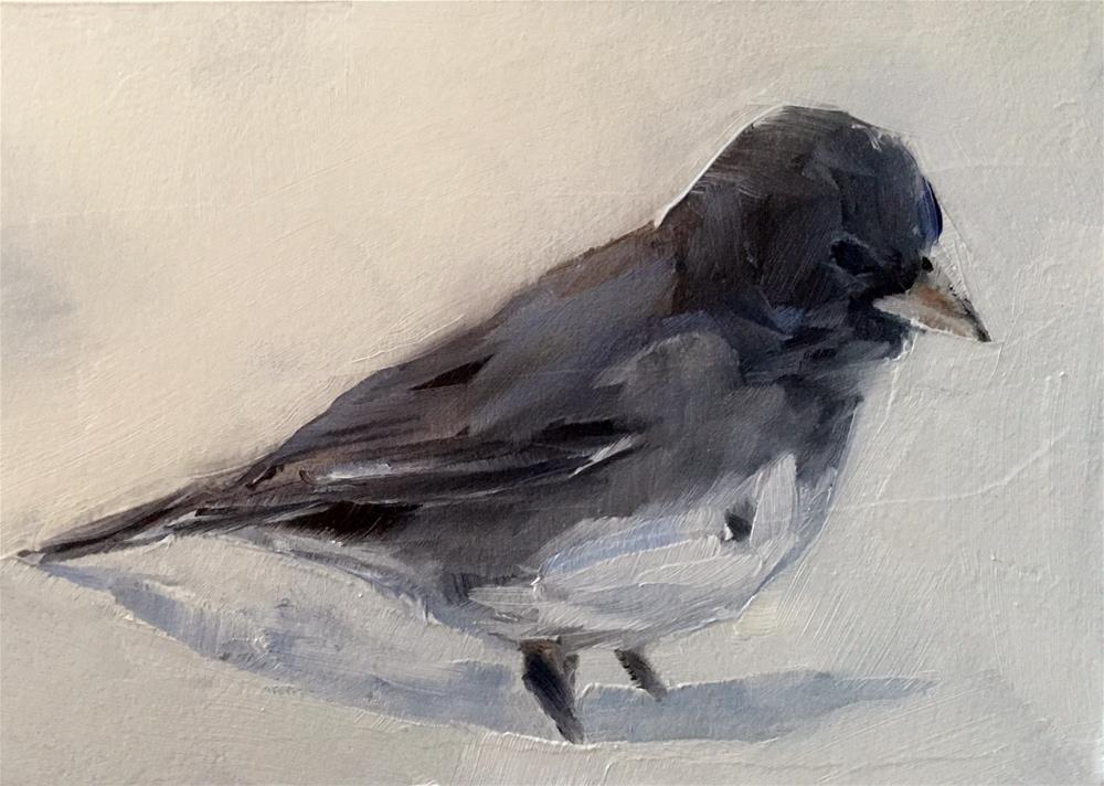 """Junco in the Snow"" original fine art by Gary Bruton"