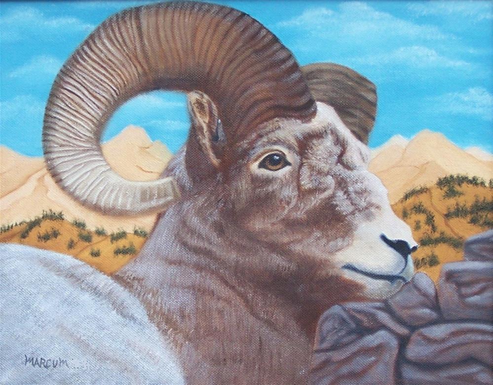 """""""Ram Bust"""" original fine art by John Marcum"""