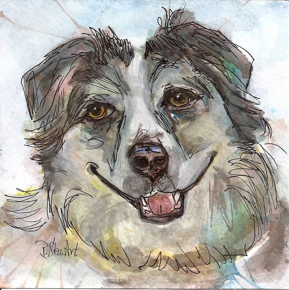 """""""5x5 Australian Shepherd Pet Portrait Aussie Original Watercolor by Penny StewArt"""" original fine art by Penny Lee StewArt"""
