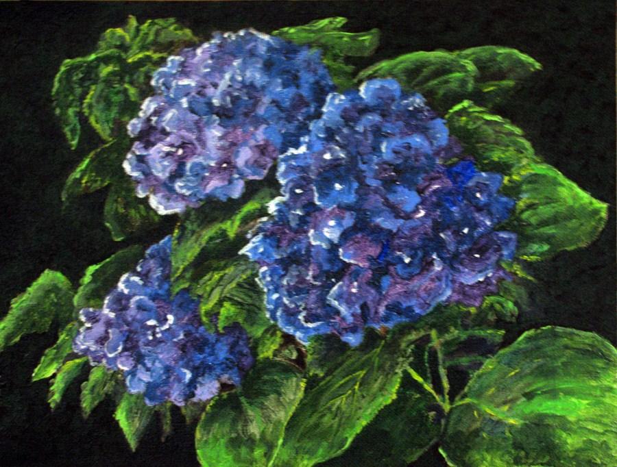 """Snowball Bush"" original fine art by Nan Johnson"