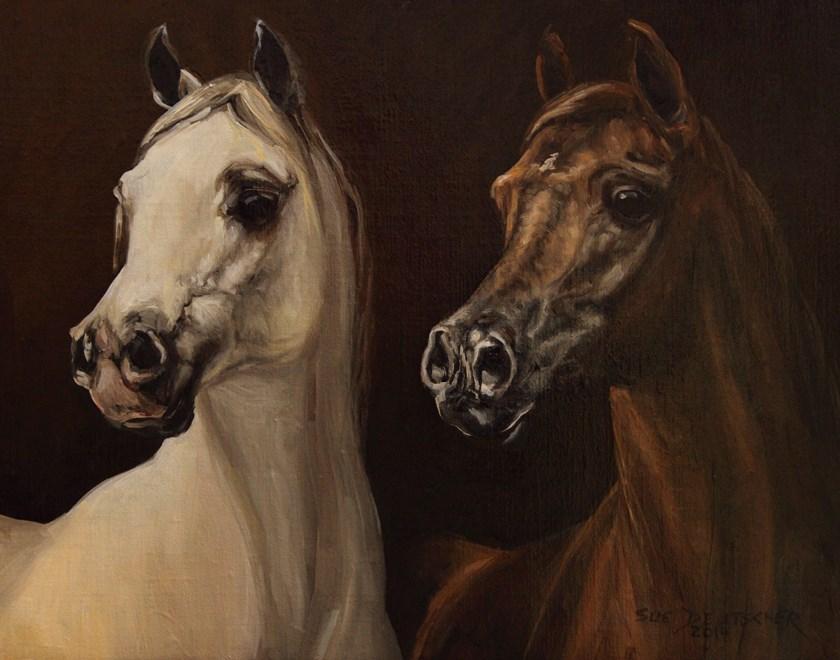 """""""Two Arab Horses"""" original fine art by Sue Deutscher"""