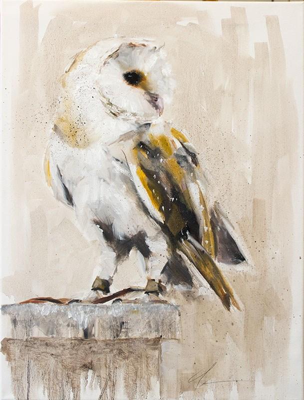 """Barn Owl"" original fine art by Clair Hartmann"