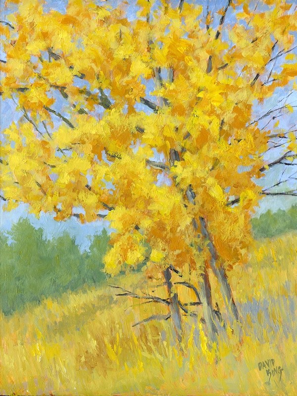 """Autumn Tree"" original fine art by David King"