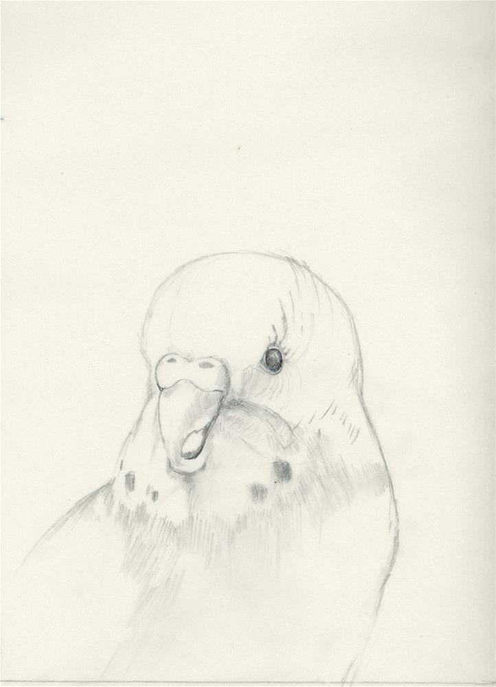 """Study VI"" original fine art by Susanne Billings"