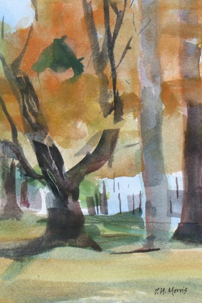 """Autumn Maples"" original fine art by Dann Morris"
