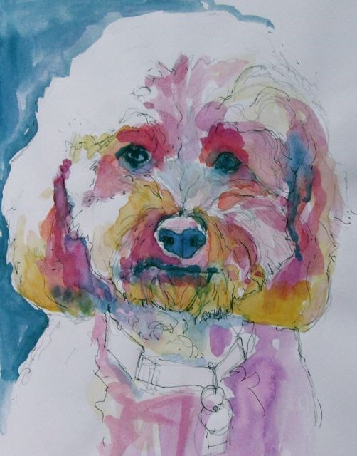 """Tucker"" original fine art by Patricia MacDonald"