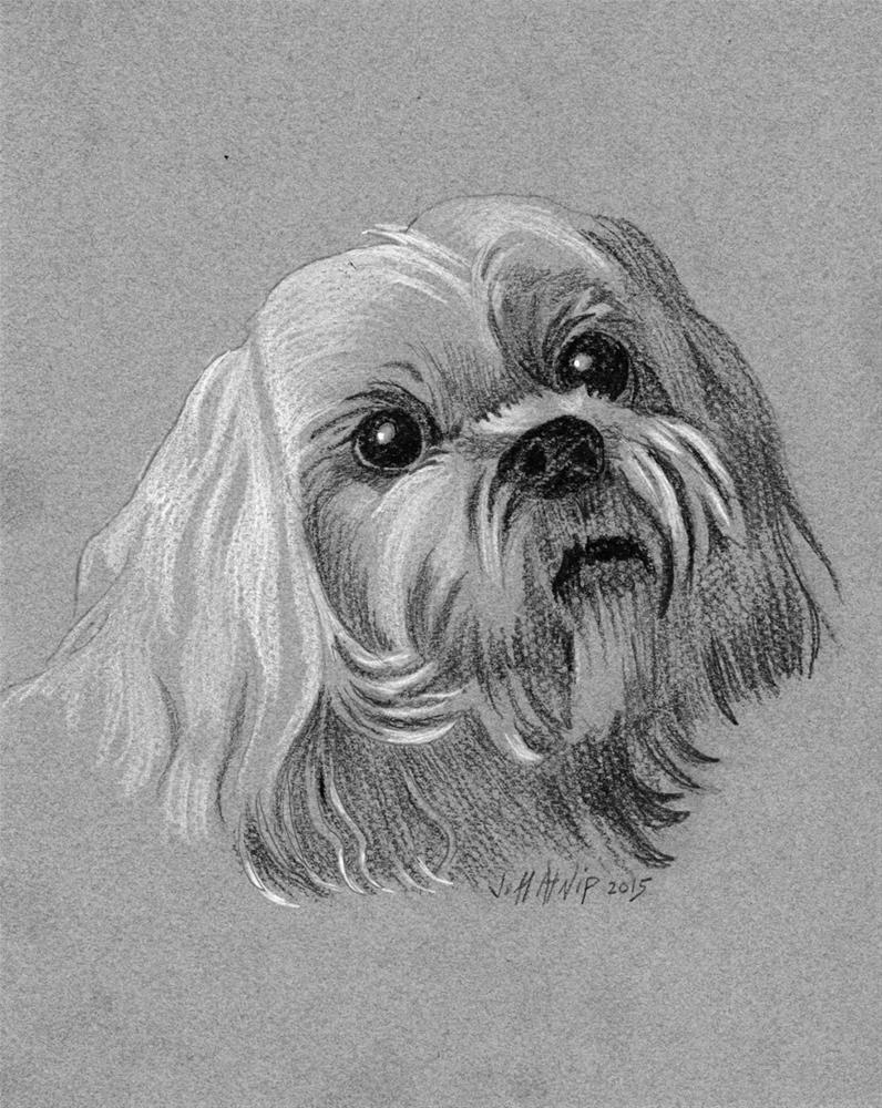 """Pet Portrait"" original fine art by Jeff Atnip"