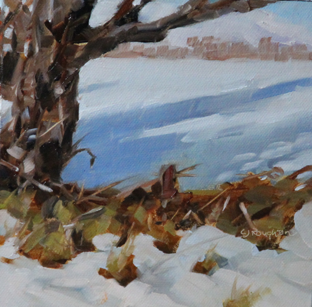 """A Challenged Landscape-In New Zealand"" original fine art by C J Roughton"