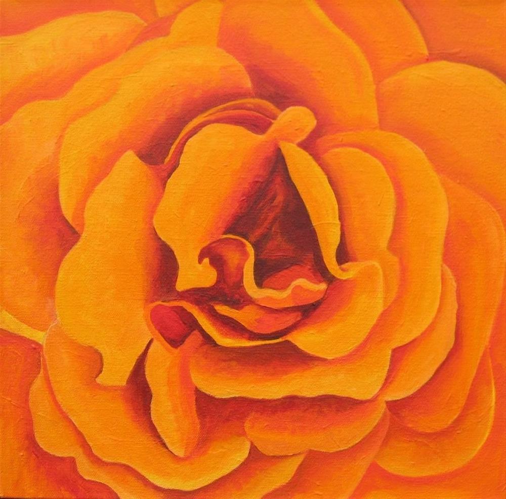 """Orange Rose Study #3"" original fine art by Lisa Wiertel"