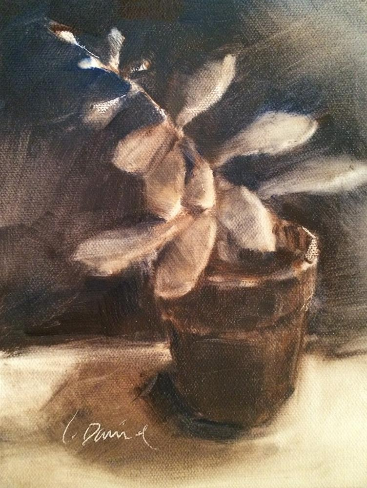 """Succulent Sketch - Eighteen of 30 in 30"" original fine art by Laurel Daniel"