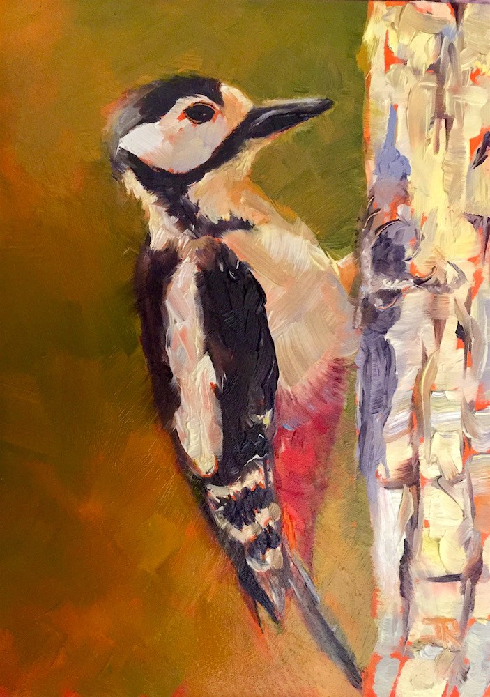 """Great Spotted Woodpecker"" original fine art by June Rollins"