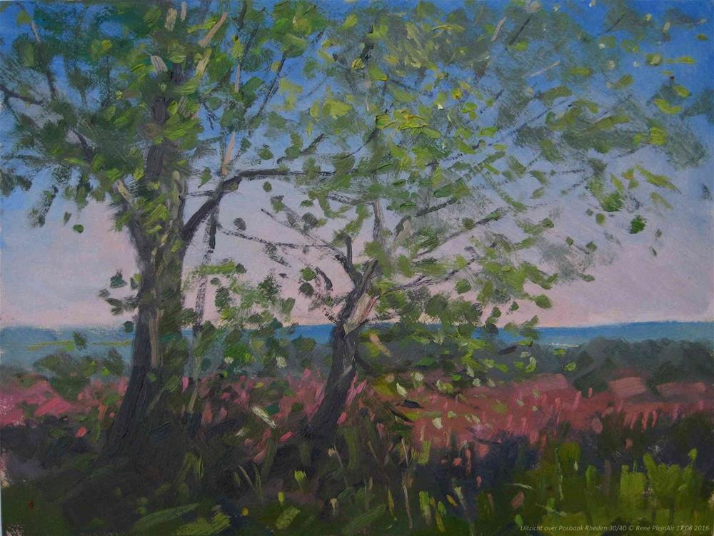 """uitzicht over Posbank Rheden, The Netherlands"" original fine art by René PleinAir"