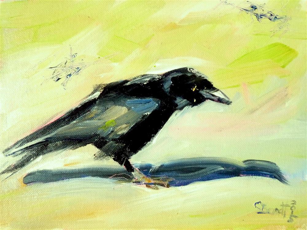 """""""jackdaw No.2"""" original fine art by Claudia Brandt"""