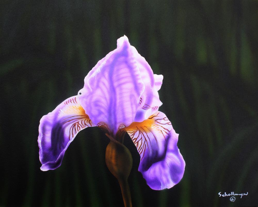 """Purple Majesty"" original fine art by Fred Schollmeyer"
