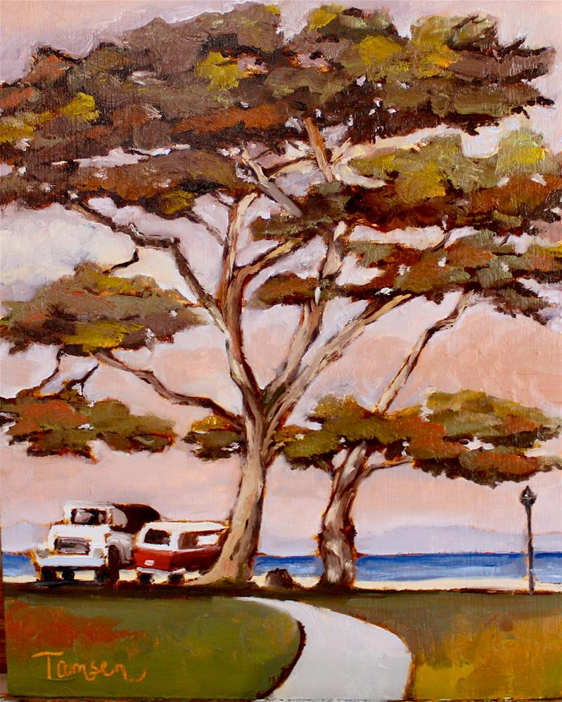 """Cypress at Lover's Point"" original fine art by Tamsen Armstrong"